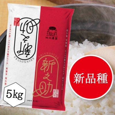 【桃川農園】桃川産新之助精米【5キロ】