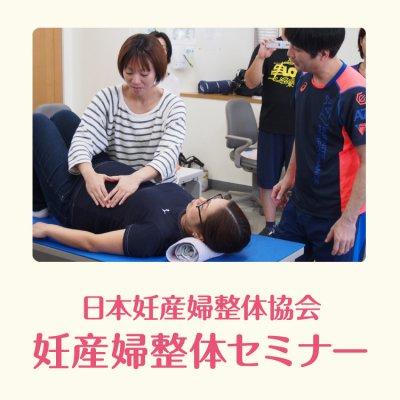 【非協会会員&初受講】5月12・13日東京妊産婦整体セミナー・テーマ2の画像1