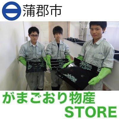 がまごおり物産STORE〜三谷水産高校協力ストア〜