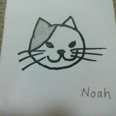 noahすけ(ノアスケ)インドネシア雑貨と猫の陶器の店