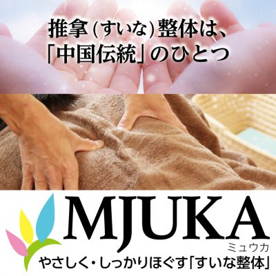 町田 鶴川 ボディケア すいな整体~MJUKA(ミュウカ)~