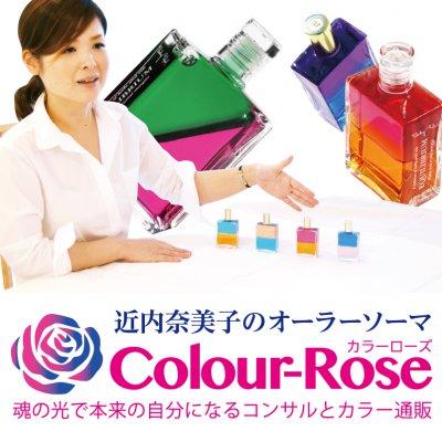 ColorRose~カラーローズ~
