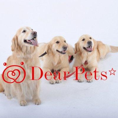 Dear Pets ☆