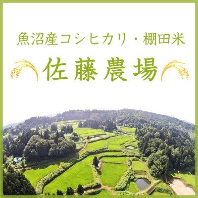 魚沼産コシヒカリ・棚田米 佐藤農場