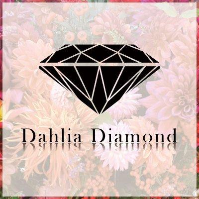 ダリアダイヤモンド