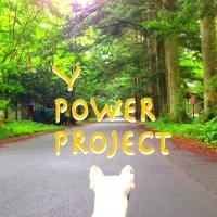 〜Y POWER PROJECT〜 愛と感謝と奇跡の酵素玄米ご...