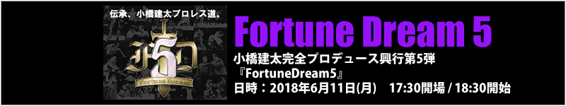 プロレス FortuneDream5
