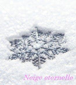 Neige eternelle(ネージュエテルネル)